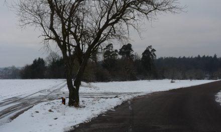 Fußballplätze mit Schnee und Eis – Benutzung möglich? – Teil 1
